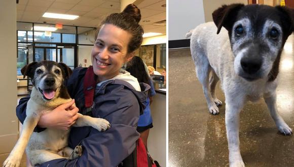 La dueña de las mascotas estaba a punto de perder la esperanza de encontrarlo hasta que la llamada del hallazgo de 'Army' llegó cuando menos lo esperaba. (Foto: Friends of Hardin County Animal Shelter en Facebook)