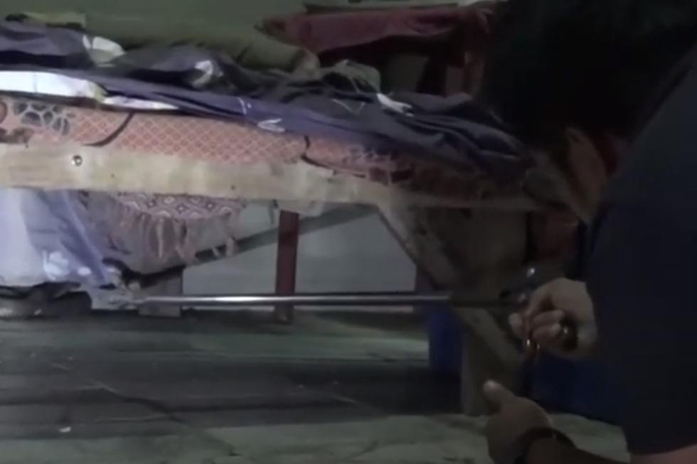 Foto 1 de 5 | El hombre quedó impactado al descubrir qué ocasionaba esos ruidos perturbadores debajo de su cama. (YouTube: Viral Press)