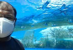 Conoce Tokio 2020: El impresionante acuario en el décimo piso de un centro comercial   VIDEO