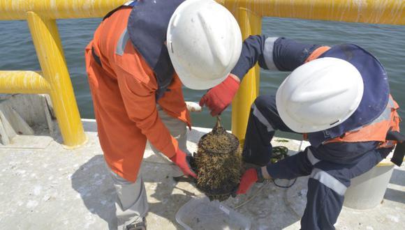Trabajo de investigación en océanos. Foto: Ximena Vélez Zuazo.