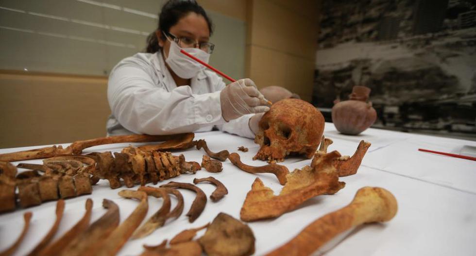 Chilca: los restos óseos que se salvaron de ser destruidos - 2