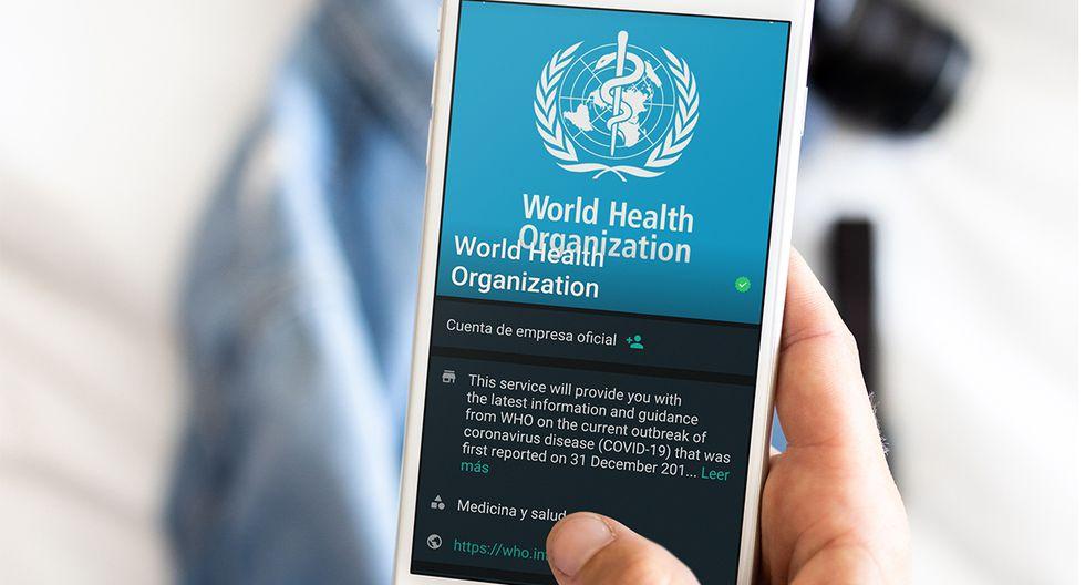 El servicio responde a una serie de avisos y se actualizará diariamente con la información más reciente. (Foto: WhatsApp)