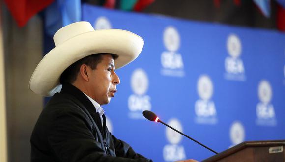 El presidente Pedro Castillo también se pronunció en favor de la democracia y afirmó que dentro de esta figura no hay cabida para la discriminación. (Foto: flickr Presidencia)