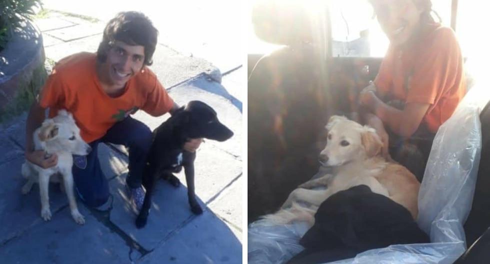 El joven mochilero adoptó a dos perritas abandonas durante su viaje y recorrió una gran distancia para llevarlas de regreso a su nuevo hogar. (Fotos: Luqas Gimenez en Facebook)