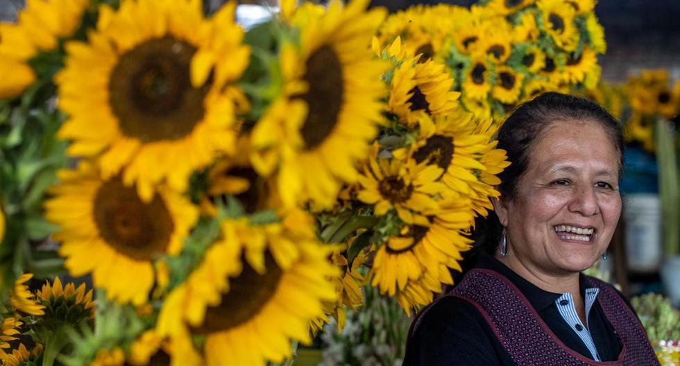 La peruana que transforma la basura en flores