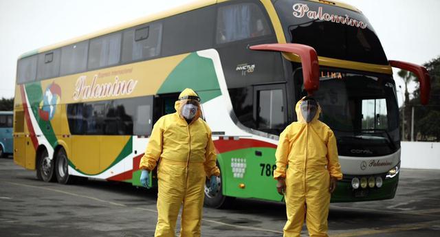 También hay confianza en el caso de los protocolos manejados por los buses de transporte terrestre interprovincial, pero se teme que la informalidad de este sector impida monitorear que estos protocolos se cumplan cabalmente. (Foto: Joel Alonzo/GEC).