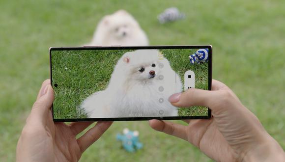 La serie Galaxy Note20 busca, dicen sus voceros, potenciar con sus herramientas el trabajo y el juego del usuario. (Foto: Samsung)