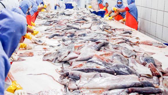 En agosto se registró 117,300 toneladas métricas por desembarque de recursos pesqueros. (Foto: Produce)