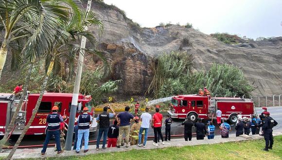 Incendio forestal se reportó a las 9:27 a.m. en malecón situado en Chorrillos. (Foto: Municipalidad de Lima)