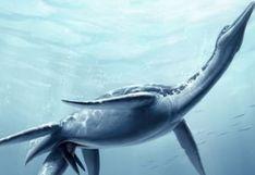 Plesiosaurio hallado en Lima - VIDEO | Lo que debes saber sobre este antiguo gigante