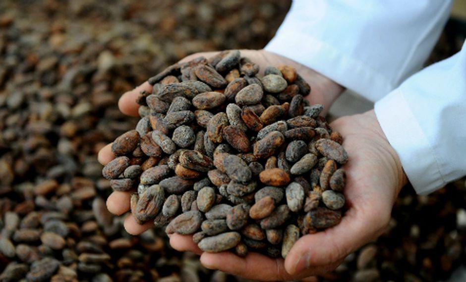 El cacao en grano sumó US$ 10.3 millones en exportaciones. (Foto: AFP)