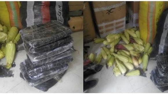 """El cargamento ilegal había sido escondido en dos sacos de polietileno que contenían """"23 paquetes forrados con bolsas plásticas, camuflados con vegetales (choclos)"""", precisó la policía de Tayabamba, localidad andina ubicada a más de 15 horas de Trujillo (Foto: PNP)"""