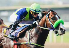Surco: fallece jinete tras caer de un caballo en plena carrera