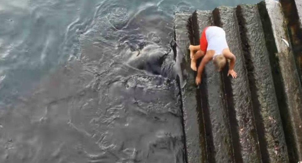 Un inocente niño se encontraba jugando cerca de la orilla de una playa cuando una imponente criatura emergió de las profundidades del mar. El video es viral y ha sido visto por millones de usuarios en Facebook