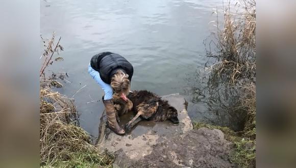 Jane Harper arriesgó su vida y logró rescatar a la indefensa Bella, que había sido atada a una enorme roca y arrojada al río.| Foto: Notts Police