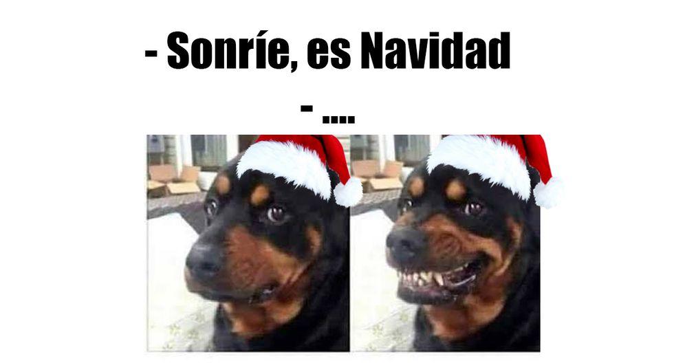 ¿Sabes cuáles son los memes que puedes mandar por Navidad 2019 por WhatsApp? Conoce algunos. (Foto: WhatsApp)