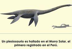 Científicos hallan por primera vez un plesiosaurio en el Perú