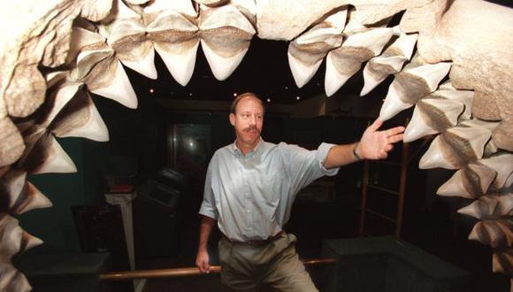 La mandíbula de un megalodón podía abrirse hasta 1,5 m. Un automóvil pequeño habría cabido en su interior.