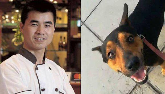 Perro del dueño de chifa Asia en Independencia