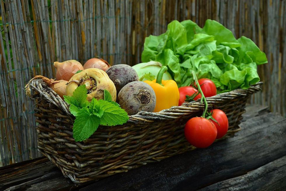 """Tener un huerto casero es una gran forma de ahorrar dinero, cuidar el medio ambiente y prestar mayor atención a la alimentación de la familia, pues tendrás vegetales libres de químicos o fertilizantes artificiales. Aquí te mostraremos las <a href=""""https://mag.elcomercio.pe/noticias/verduras/""""><font color=""""blue"""">verduras</font></a> y hortalizas más fáciles de cultivar en el hogar."""