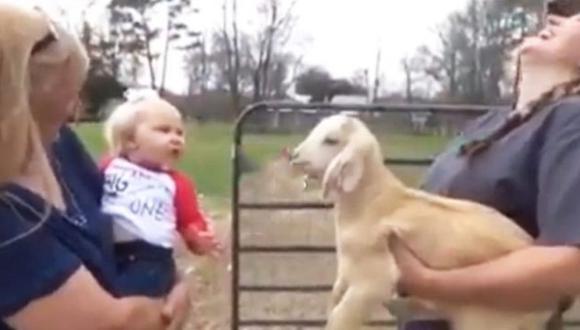 En el video de Facebook se puede ver la interacción que tiene este bebé con el animal de granja. Al parecer ellos hablan entre sí. (Foto: Facebook)