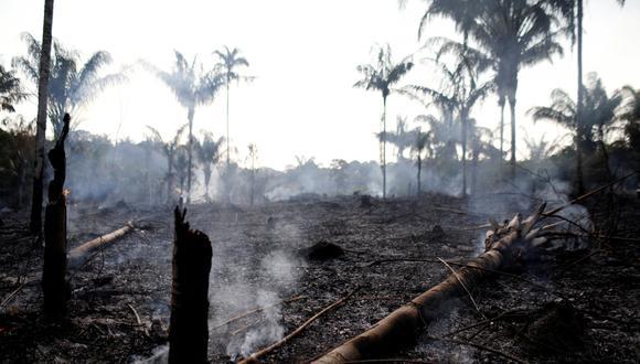 Los incendios en la Amazonía de Brasil han marcado un récord en lo que va del año. (Reuters).