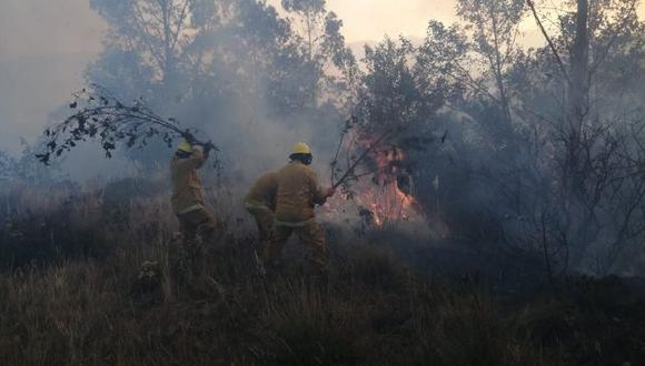 Los incendios forestales se han incrementado en más de 400% en comparación al año pasado en el mismo periodo, afectando pastizales, cultivos agrícolas y bosques.