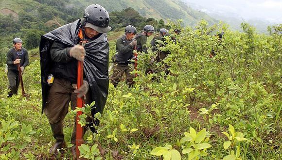 Ni la pandemia pudo evitar que los cultivos de hoja de coca continúen aumentando. Urgen erradicaciones en el Vraem. (Foto: Mininter)