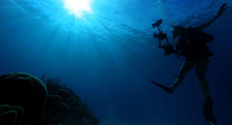 Kristian Laine tomó fotografías a una insólita criatura en el fondo del mar en Australia. (Pixabay)