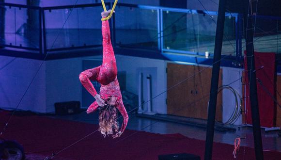 Acróbata sufre aparatosa caída durante su presentación en circo ruso. (Foto: Pixabay / referencial)