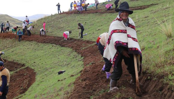 Minagri anuncia que siembra y cosecha de agua generará más de 91 mil empleos en 11 regiones del país. (Foto: Andina)