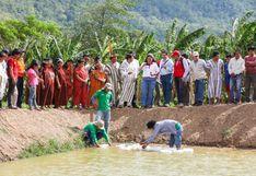 Junín: implementan 19 estanques piscícolas en el Vraem para producir peces tropicales