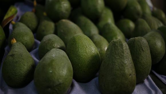Senasa sustentó y fundamentó que las paltas que Perú exportará a México no representan riesgo fitosanitario. (Foto: GEC)