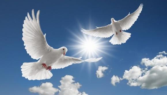 ¿Sabías que durante el mes de septiembre se dedica un día para reflexionar sobre la necesidad de forjar la paz en todo el mundo? Aquí te lo contamos. (Foto: Ukrinform)