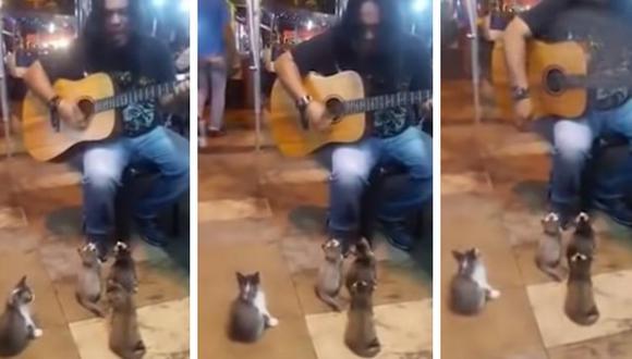 Los mininos quedaron hipnotizados por el sentimiento que reflejó el artista con su guitarra. (Foto: Sami Hussein en YouTube)