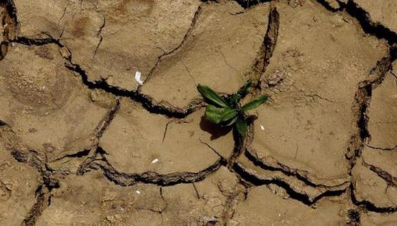 Alertan que sequía amenaza a 10 millones de personas en Etiopía