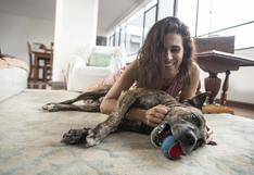 """Vanessa Saba: """"Mi perro fue vital para aceptar que no podría ser mamá"""""""