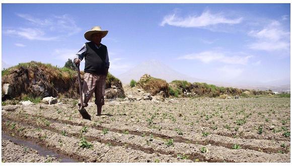 Dentro de las actividades primarias, uno de los sectores que impulsó el crecimiento de la producción nacional fue el agropecuario con 3,64%. (Foto: Archivo)