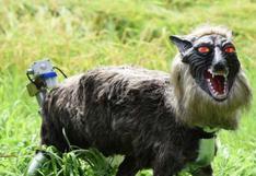 Super Monster Wolf, el lobo robótico que protege cultivos en Japón