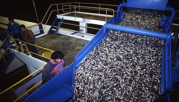 ¿El sector acuícola todavía necesita incentivos tributarios? - 1