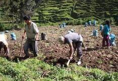 """Pedro Castillo: """"Agrobanco se convertirá en un eficiente motor del desarrollo de la agricultura del país"""""""