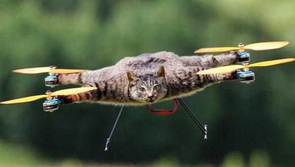 El hombre que convirtió a su gato mascota en un drone