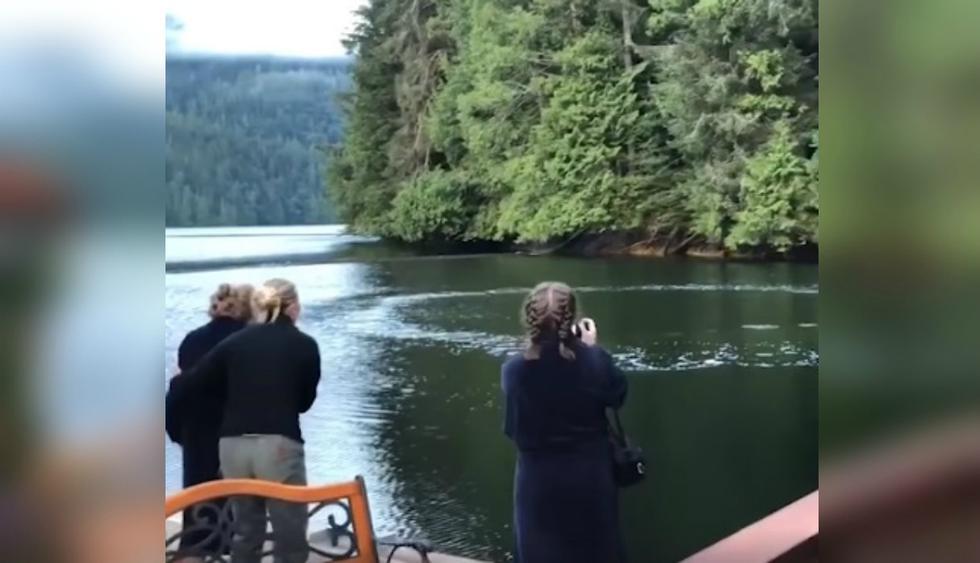 Usuarios de Facebook no pudieron evitar quedar asombrados ante la filmación. (Foto: Captura)