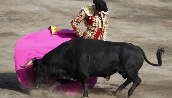 En el 2018, mas de cinco mil personas demandaron la inconstitucionalidad de una disposición final incluida en la Ley de Protección y Bienestar Animal, que excluía de dicha protección a las corridas de toros, peleas de toros, peleas de gallos y demás espectáculos declarados de carácter cultural. (Foto: El Comercio)