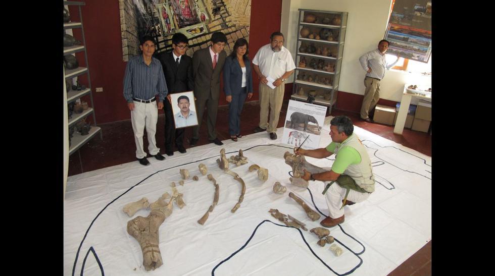 Froilán Tantaleán Vásquez, ingeniero y catedrático de la U. Nacional Pedro Ruíz Gallo, era un aficionado a la paleontología. Coleccionaba fósiles desde los 17 años (Foto Wilfredo Sandoval / El Comer