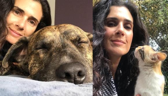 En una conversación exclusiva con El Comercio, la actriz compartió más acerca de los pasatiempos que la han acompañado durante el confinamiento, la importancia de que el Estado sume más apoyo al arte, y su amor por los animales.  (Fotos: IG/ @vanessasabaoficial)