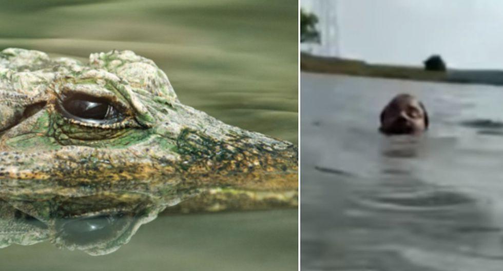 El hombre por poco muere tras ser atacado por un cocodrilo. (Pixabay / YouTube: The Times of India)
