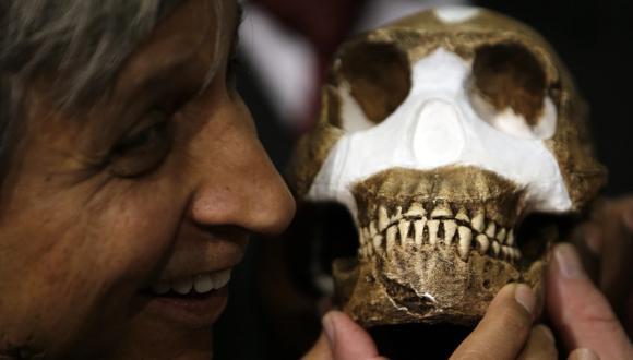 Polémica en Sudáfrica tras descubrimiento de nueva especie
