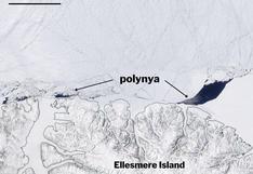 Detectan un enorme agujero en el hielo más antiguo y grueso del Ártico