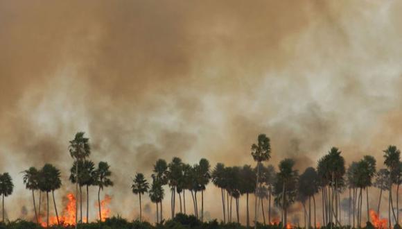 Incendio en el Pantanal de Paraguay. Foto: Tati Gallupi / Guyra Paraguay.